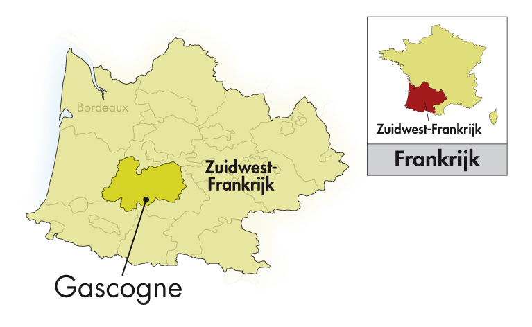 Famille Fezas Gascogne Java blanc