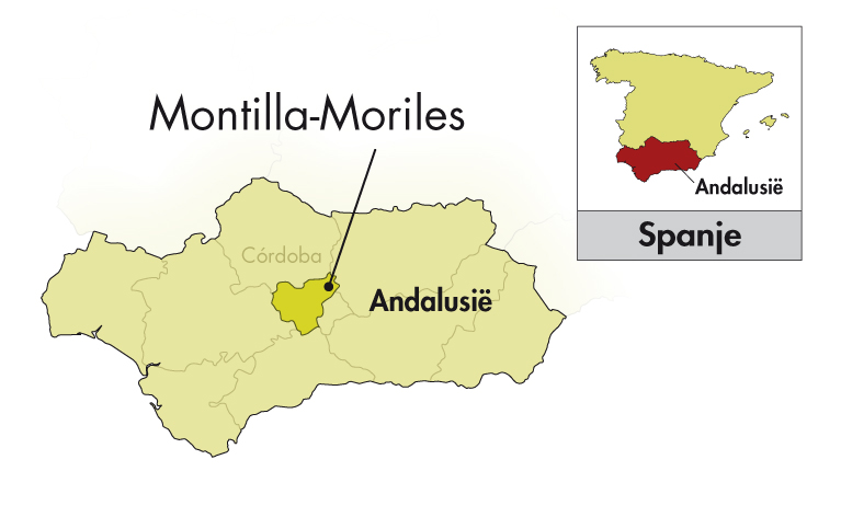 Alvear Montilla-Moriles Fino CB